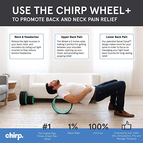 Plexus Chirp Wheel for Back Pain, Stretches and Strengthens Core Muscles, Relieves Strain to Muscles and Ligaments, Helps Prevent Herniated/Bulging ...