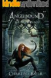 The Dark Lands (Angelbound Origins Book 5)