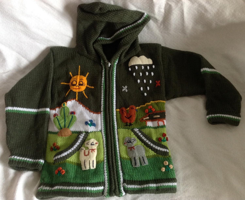 0162f8109da0c Amazon.com  Children alpaca wool hand knitted green sweater in 3-D designs  size 8  Baby