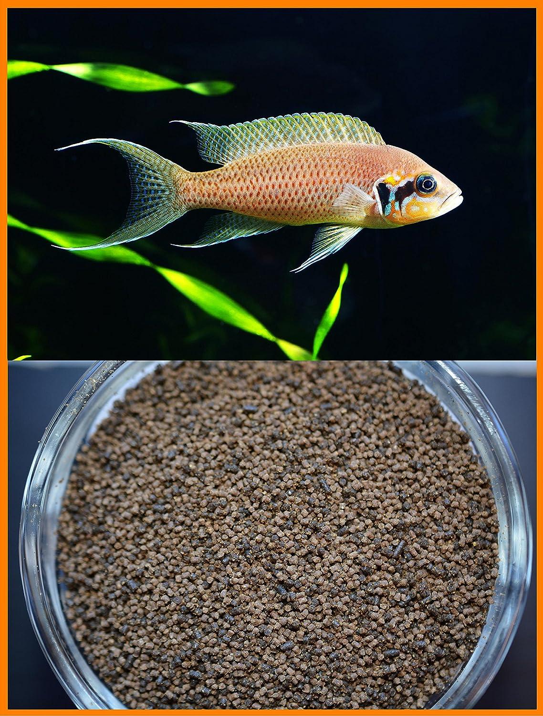 AQUATICBLENDEDFOODS Slow Sinking & Soft BIT Mini Pellet Mix - Small Fish Fish Food Mix (2 LBS.)