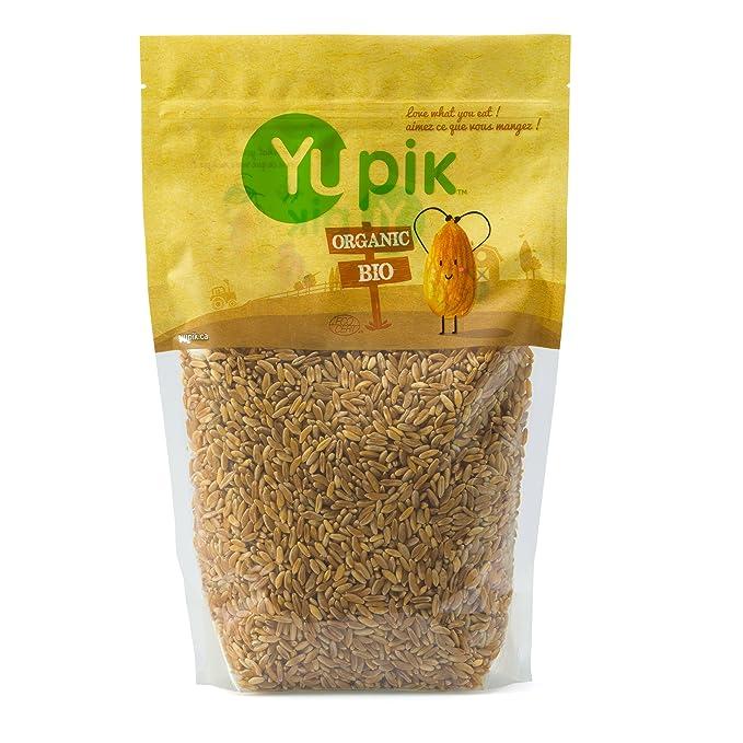 AmazonSmile: Yupik Organic Kamut Grains, 2.2 Pound