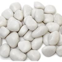 Pebble Kart By Meraki India Polished Glossy Pebble Stones (450 G, Medium, White)