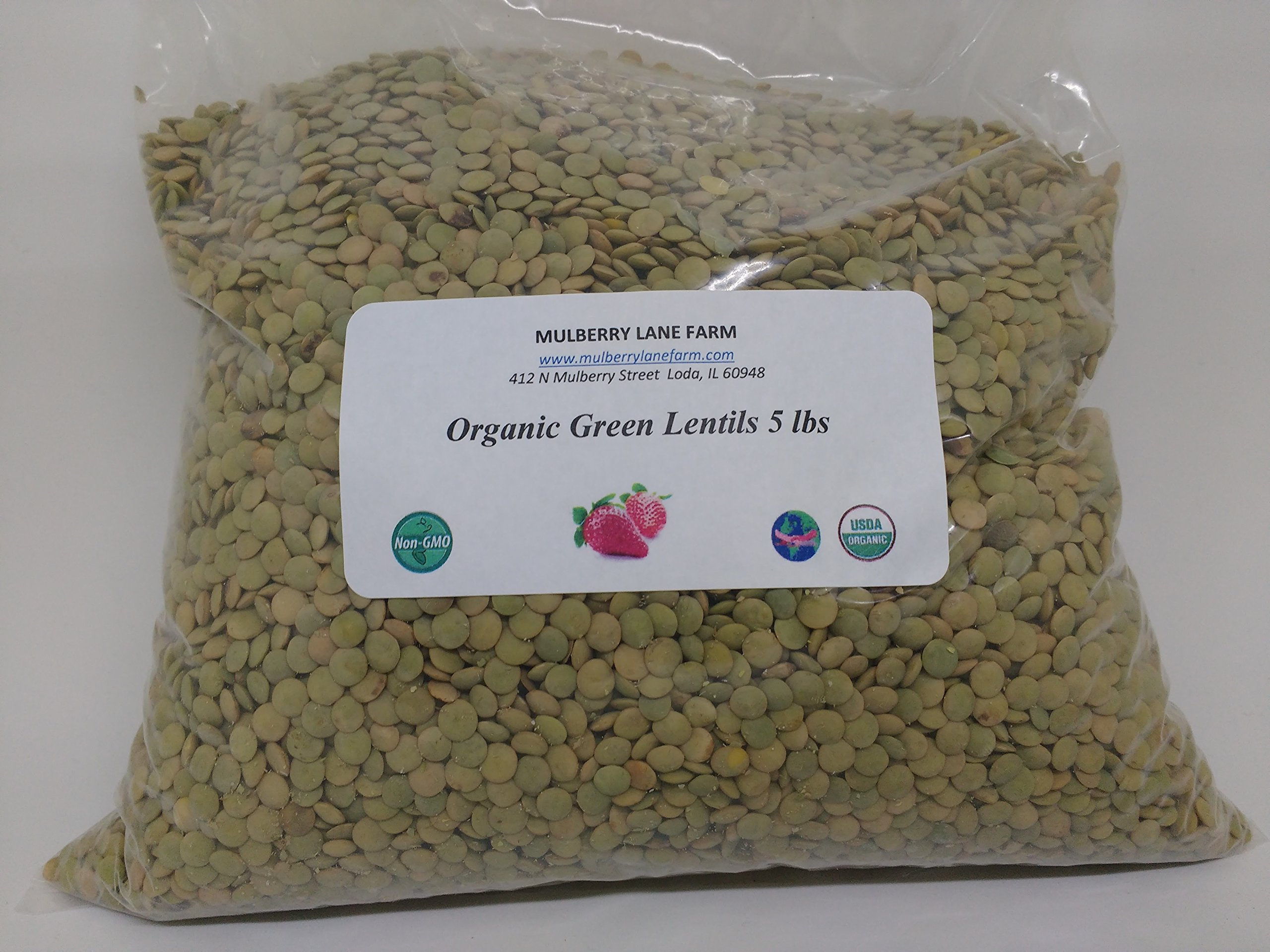 Green Lentils 5 lbs (five pounds) USDA Certified Organic, Non-GMO, BULK.