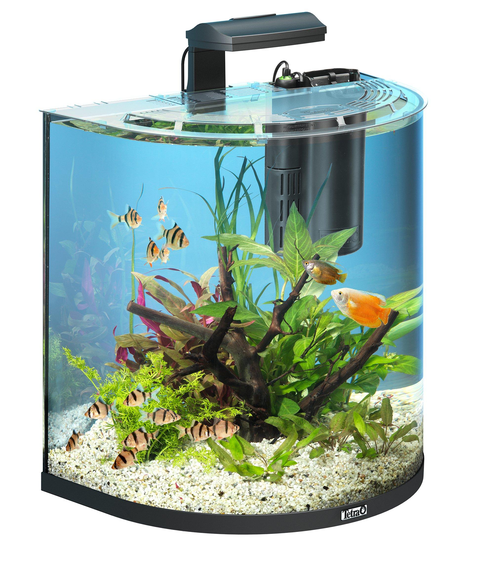 Aquarium Moderne Amazon Fr