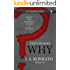 STOP A MURDER - WHY (Mystery Puzzle Book 3)
