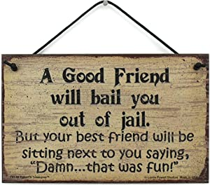 Egbert's Treasures 5x8 Vintage Style Sign Saying, A Good Friend Will Bail You Out of Jail. But Your Best Friend Will be Sitting Next to You Saying, Damn. That was Fun!