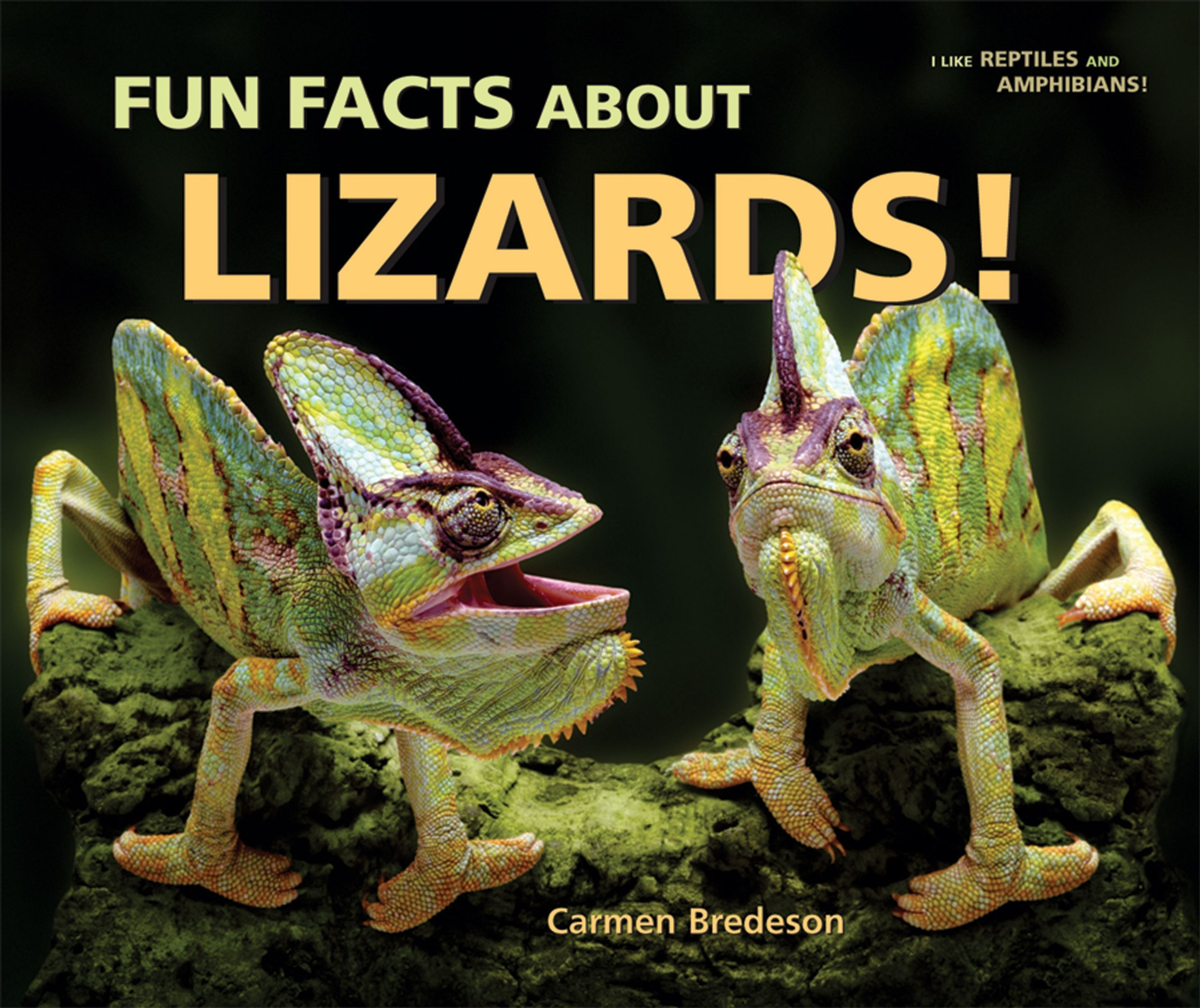 Download Fun Facts About Lizards! (I Like Reptiles and Amphibians!) ebook