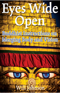 The spiritual practices of rumi radical techniques for beholding eyes wide open buddhist instructions on merging body and vision fandeluxe Images