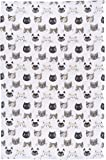 Now Designs Cotton Kitchen Towel, Cats Meow Print