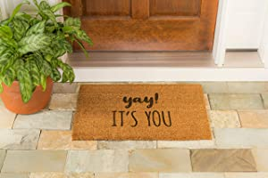 Evergreen Flag Funny Novelty Door Mat 28 x 16 Inches - Durable Indoor Outdoor Rug Yay! It's You