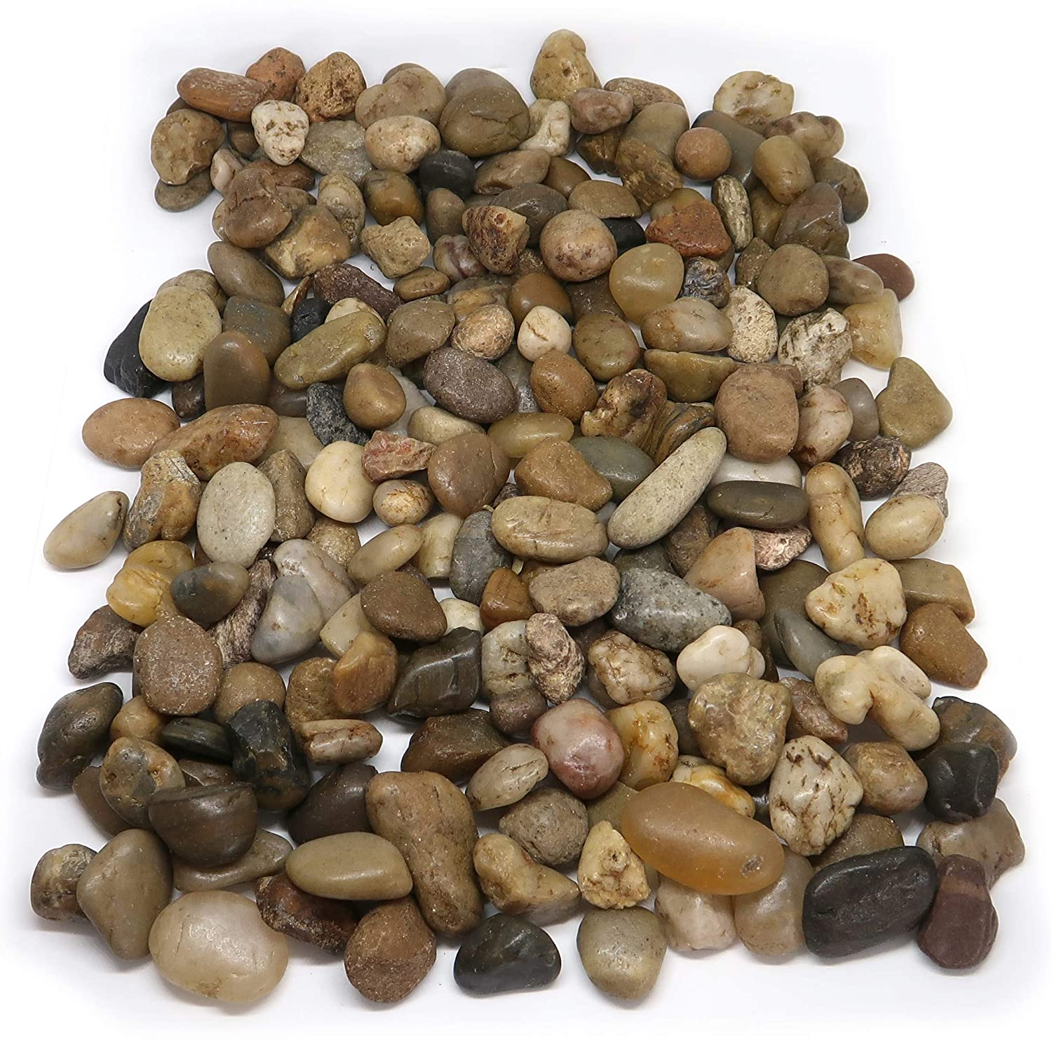 1Buy UK 1kg New Assorted Browns Natural Stones Pebbles Craft Table Decoration Pot Vase Garden Weddings Rocks Aquarium