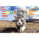 旅猫ニャン吉 写真集 -どんニャときでも笑う門には福来る!-