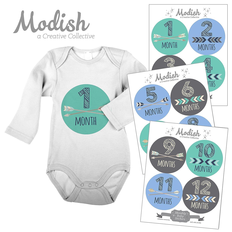 人気特価激安 12 Collective Monthly Baby 12 Stickers, Blue, Teal, Modish Gray, Boy, Baby Belly Stickers, Monthly Onesie Stickers, First Year Stickers Months 1-12, Arrows, Chevron, Tribal, Baby Boy by Modish - Creative Collective B00XGWYGUO, シューズショップ nonnonxx2001:c54bb6fb --- mvd.ee