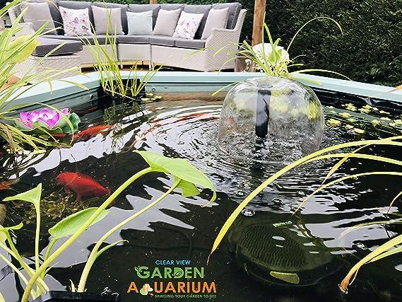 Lily Clear View Garden Elevador de estanque de peces de acuario con ventana de visualización: Amazon.es: Jardín