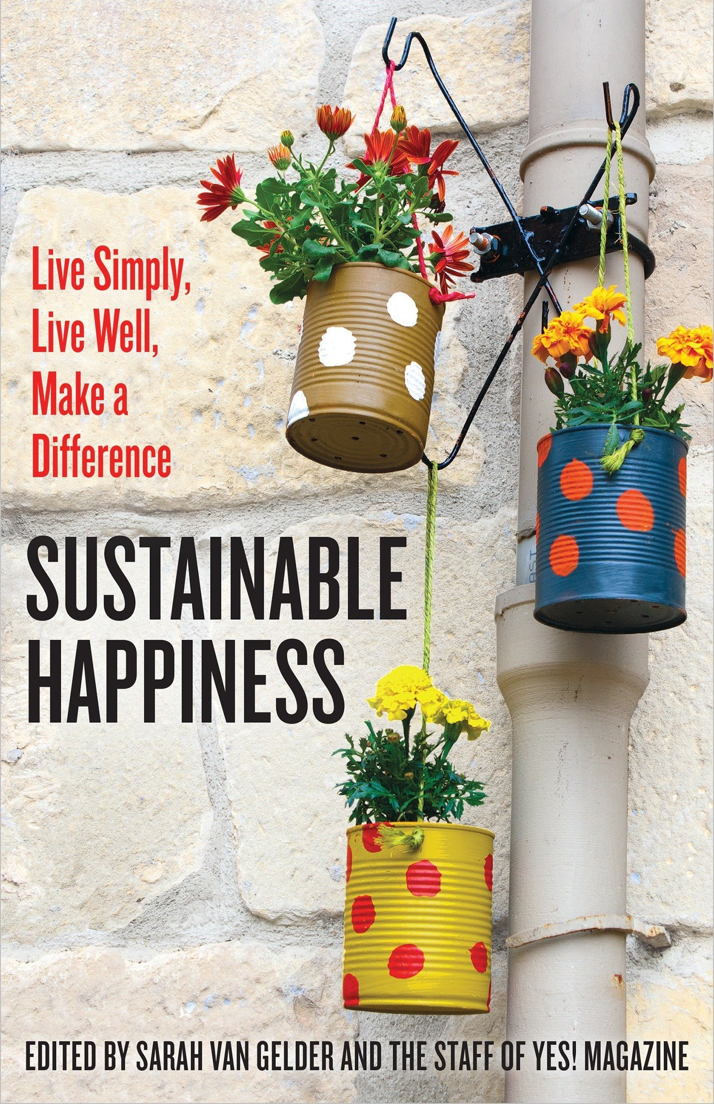 How to Create Sustainable Happiness recommendations