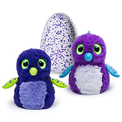'Hatchimals - Hatching Egg - Interactive Creature - Draggle - Blue/Purple Egg by Spin Master