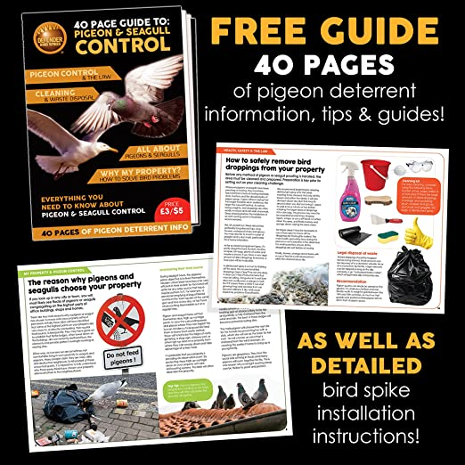 Defender Stainless Steel Bird Spikes Kit | 4 Feet | Pigeon Control Guide |  Various Size Kits