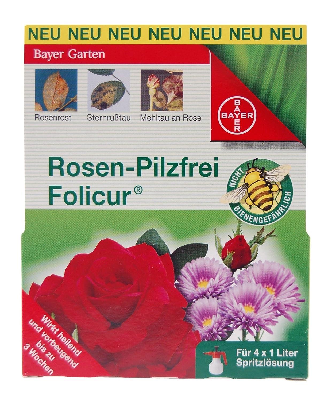 Rosenrost Behandlung bayer pilzfrei baymat 125ml rosenrost sternrußtau amazon de