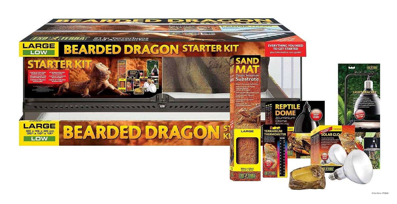 Exoterra Terrarium Kit For Pogona Amazon Co Uk Pet Supplies