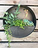 Round Hanging Wall Vase Planter for Succulents or