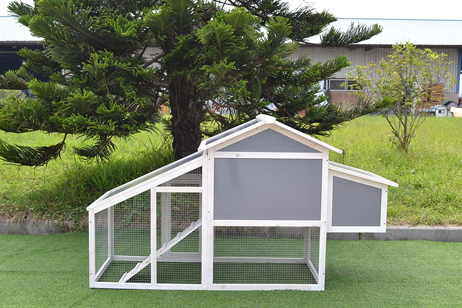 Coop King Poly-Carbonate Chicken Coop with Metal Tray