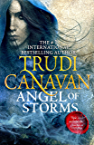 Angel of Storms (Millennium's Rule Book 2)