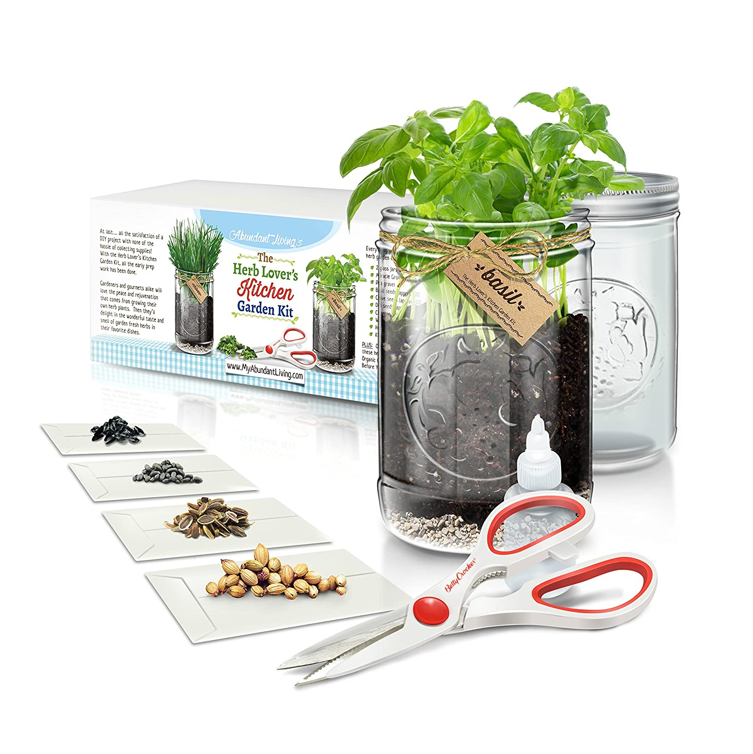 Herb Kitchen Garden Kit Amazoncom Herb Lovers Kitchen Garden Kit By Abundant Living