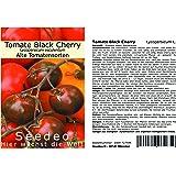 Seedeo Tomate Black Cherry (Lycopersicum L.) 25 Samen BIO