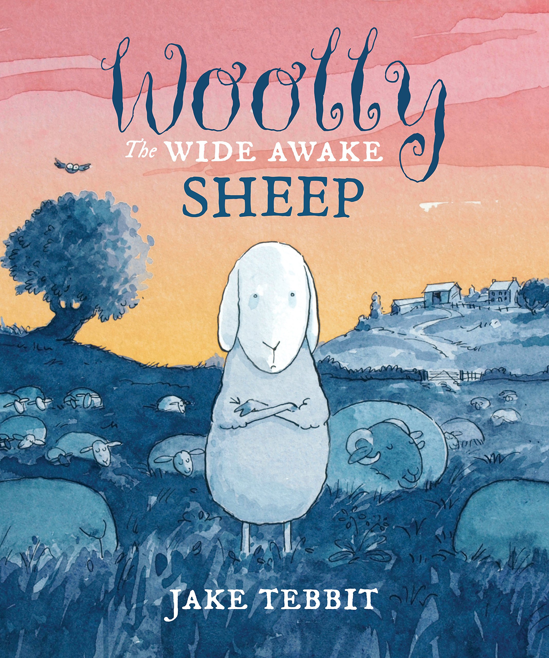 Download Woolly the Wide Awake Sheep ebook