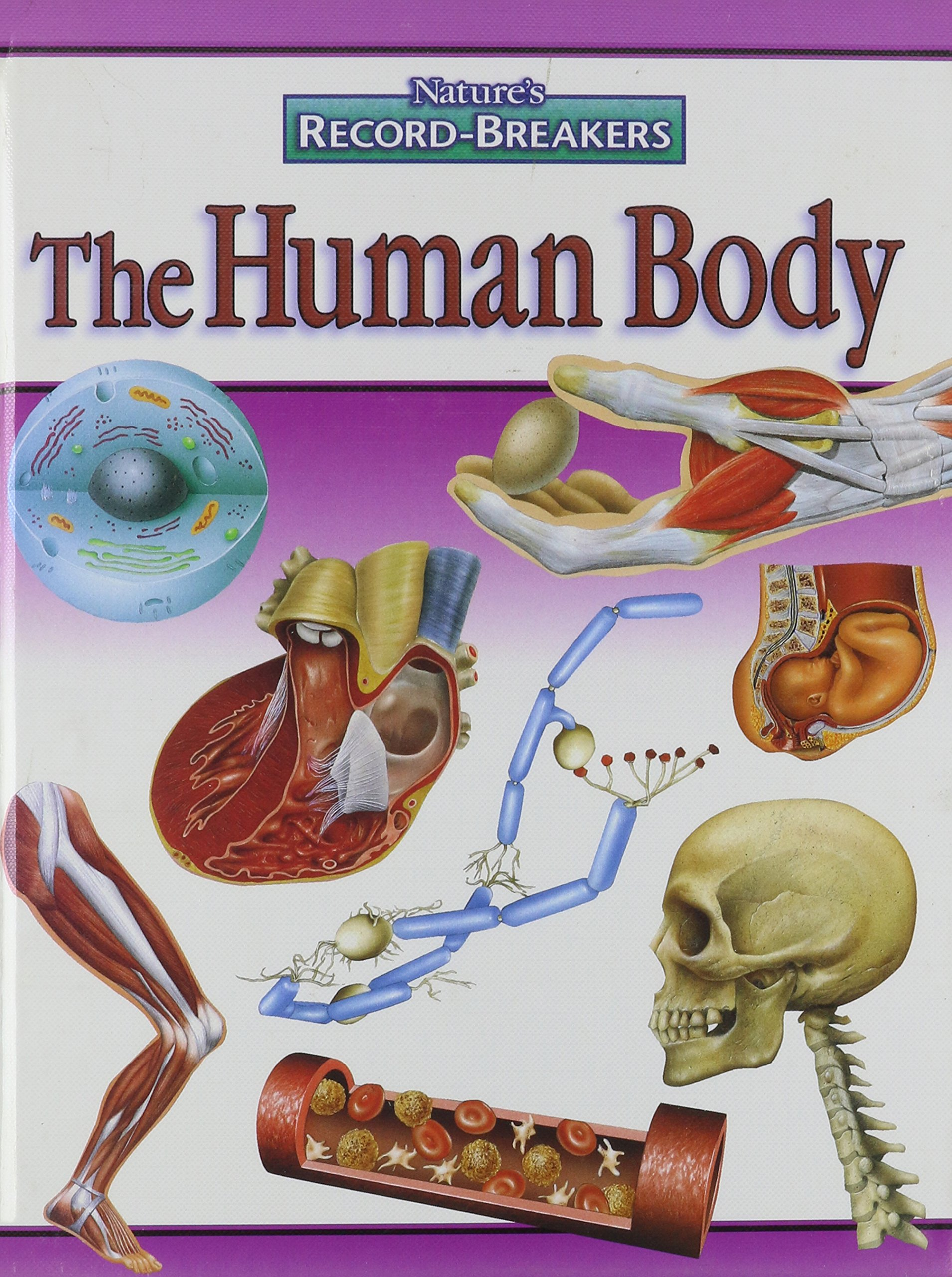 Read Online The Human Body (Nature's Record-Breakers) pdf epub