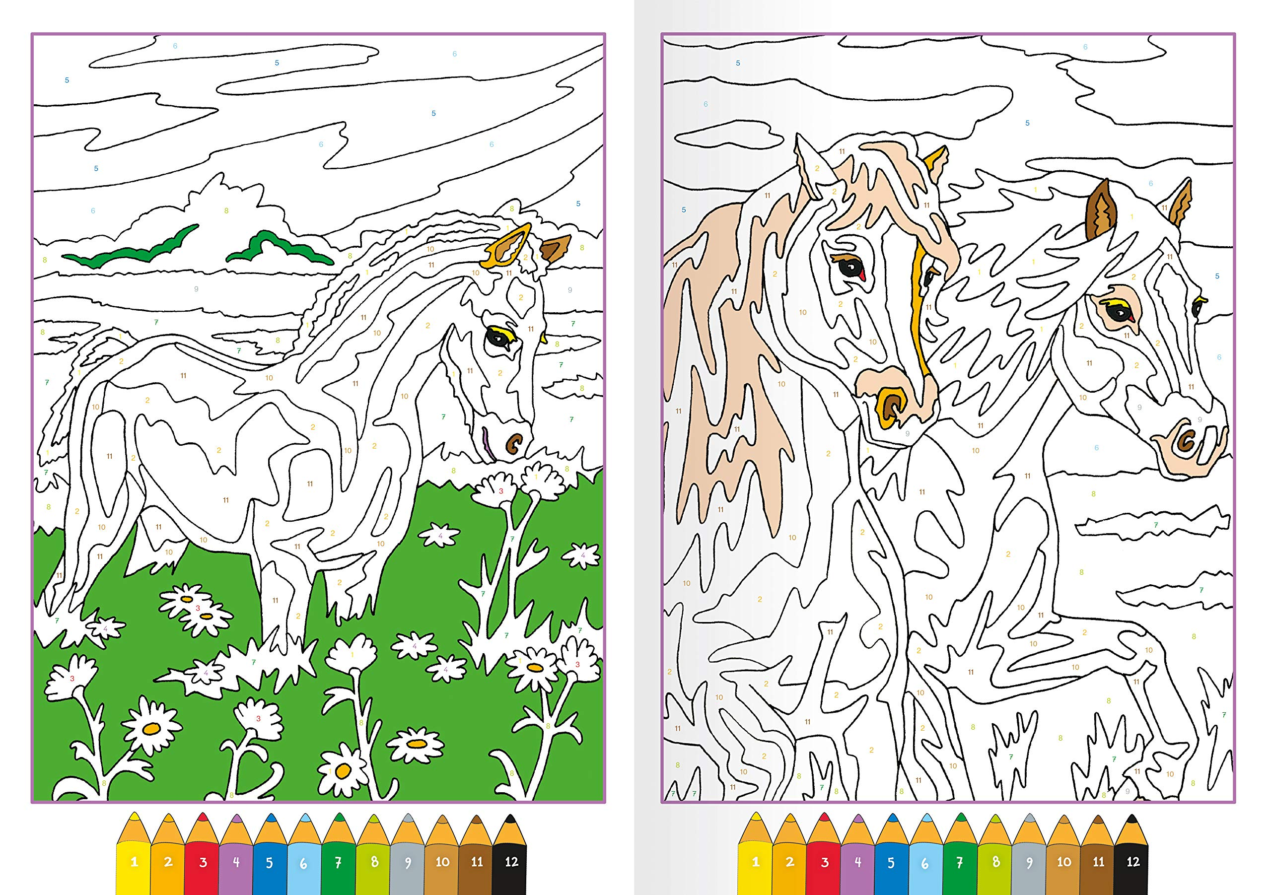 Malen Nach Zahlen Pferde Amazon De Wagner Maja Bucher