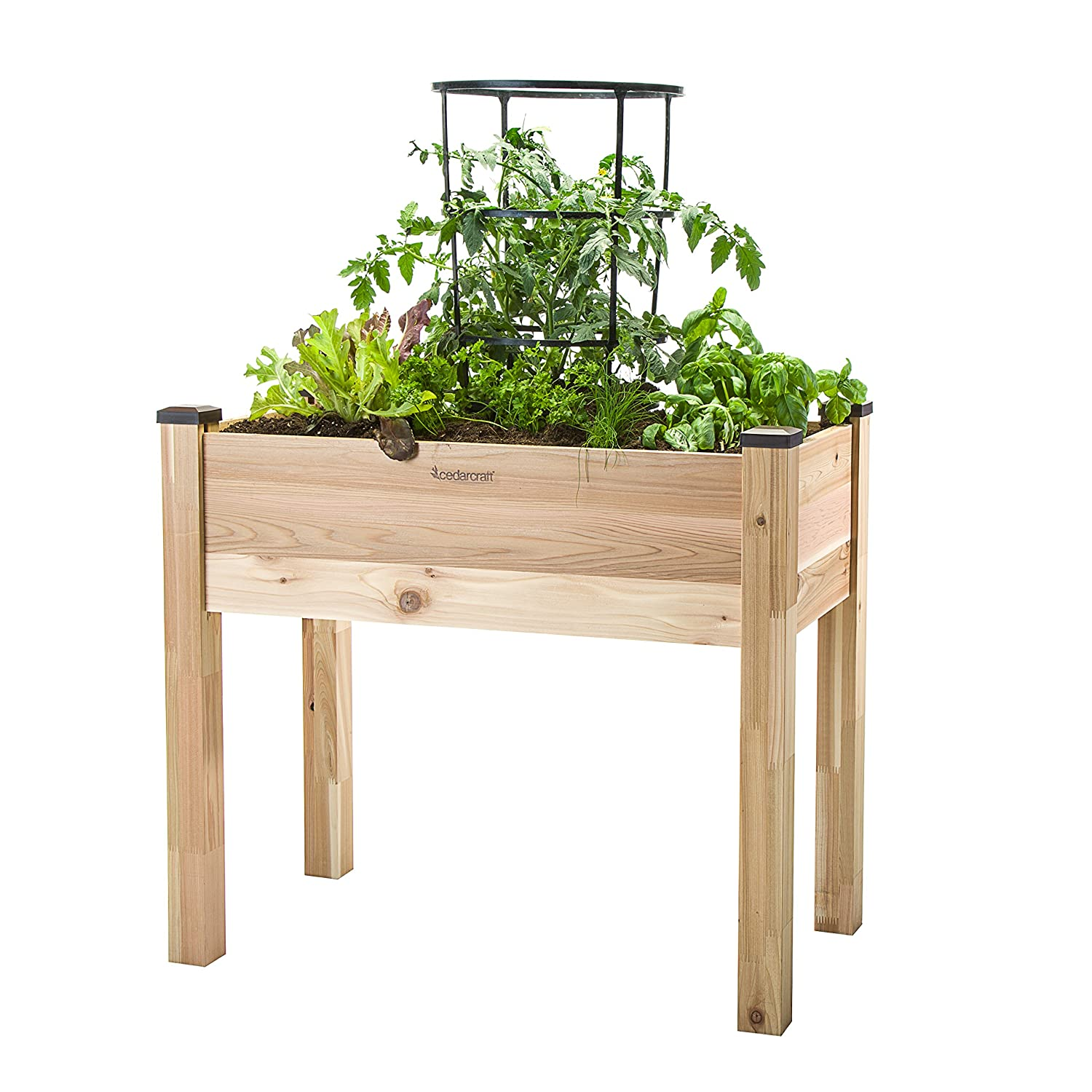 CedarCraft Elevated Cedar Planter 18 x 34 x 30 – Grow Fresh Vegetables, Herb Gardens, Flowers Succulents. Beautiful Raised Garden Bed for a Deck, Patio or Yard Gardening. No Tools Required.