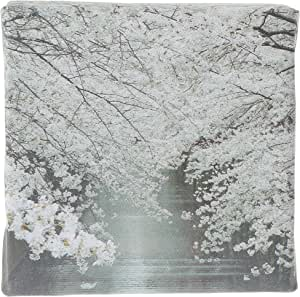 Decalac A Canvas Arts for Wall, CANVS10-180076