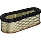 Stens 100-089 Air Filter Replaces Briggs & Stratton 691667 4166 5075H 493910