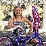 Huffy Kids Bike for Girls, Go Girl 20 inch Pink