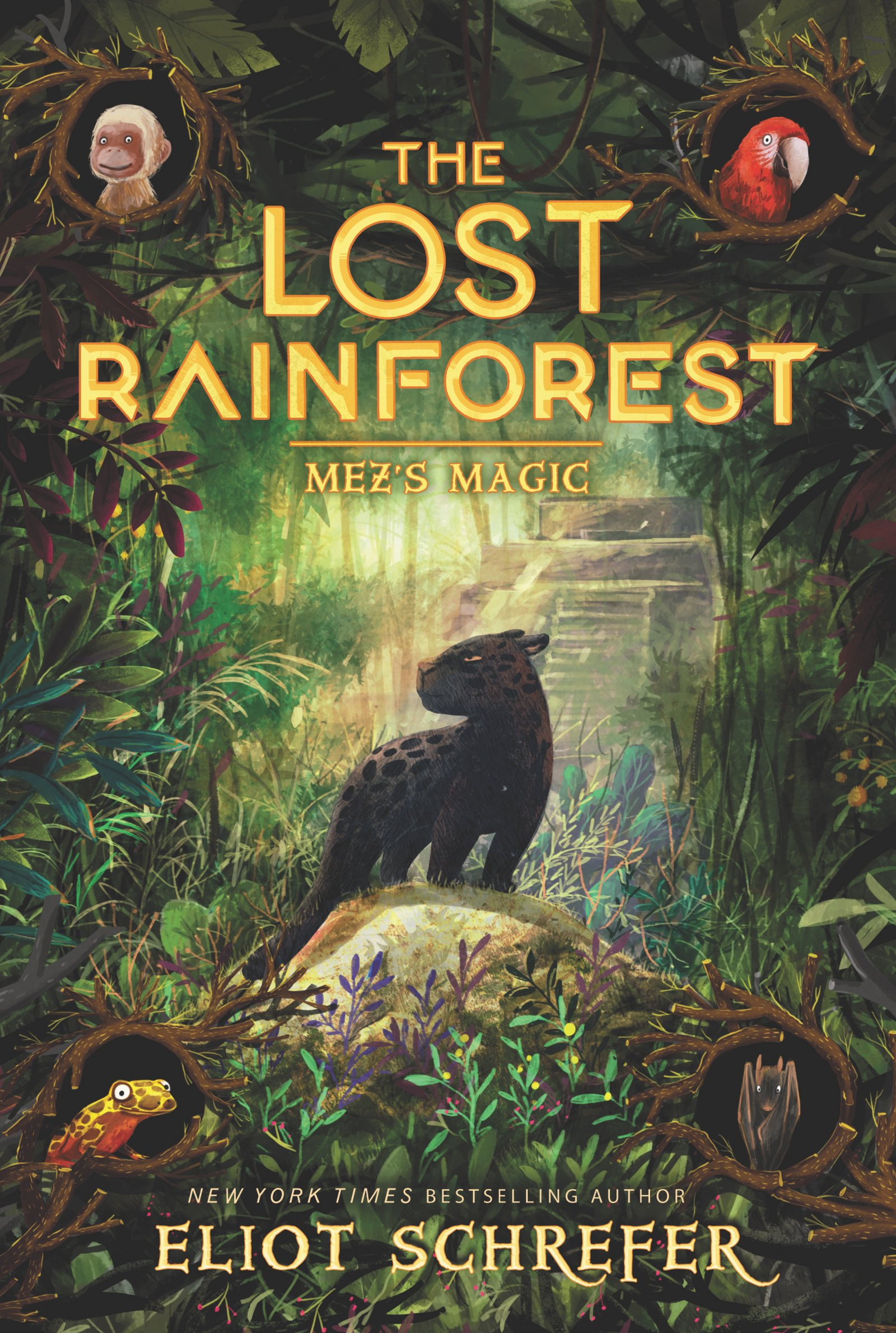 The Lost Rainforest #1: Mez's Magic: Schrefer, Eliot, Dziubak, Emilia:  9780062491138: Amazon.com: Books