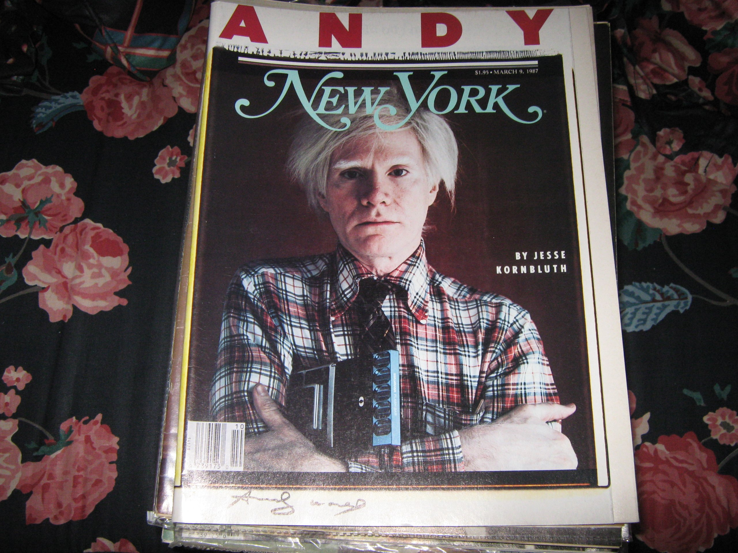 new york magazine andy warhol the world of warhol michael olajide jr boxer all about headaches starlight expressroller derby