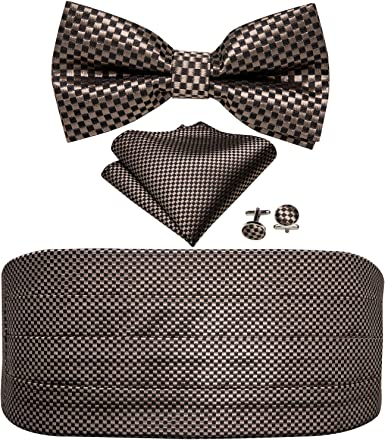 Alizeal Mens Paisley//Solid Pre-tied Party Adjustable Bow Tie Cummerbund and Pocket Square Gift Set