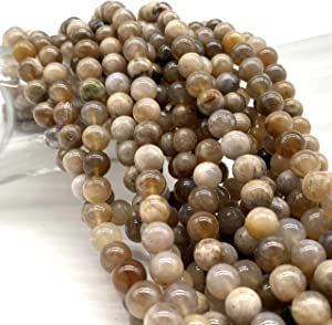 [ABCgems] Indonesian Fossil Ocean Agate 8mm Smooth Round Beads for Beading & Jewelry Making