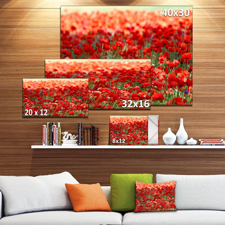 12 H x 20 W x 1 D 1P Designart PT12981-20-12 Thick Red Poppy Field-Large Flower Canvas Artwork