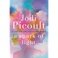 A Spark of Light: A Novel