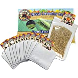 Green Lacewing 5000 Eggs - Good Bugs - Aphid Exterminator