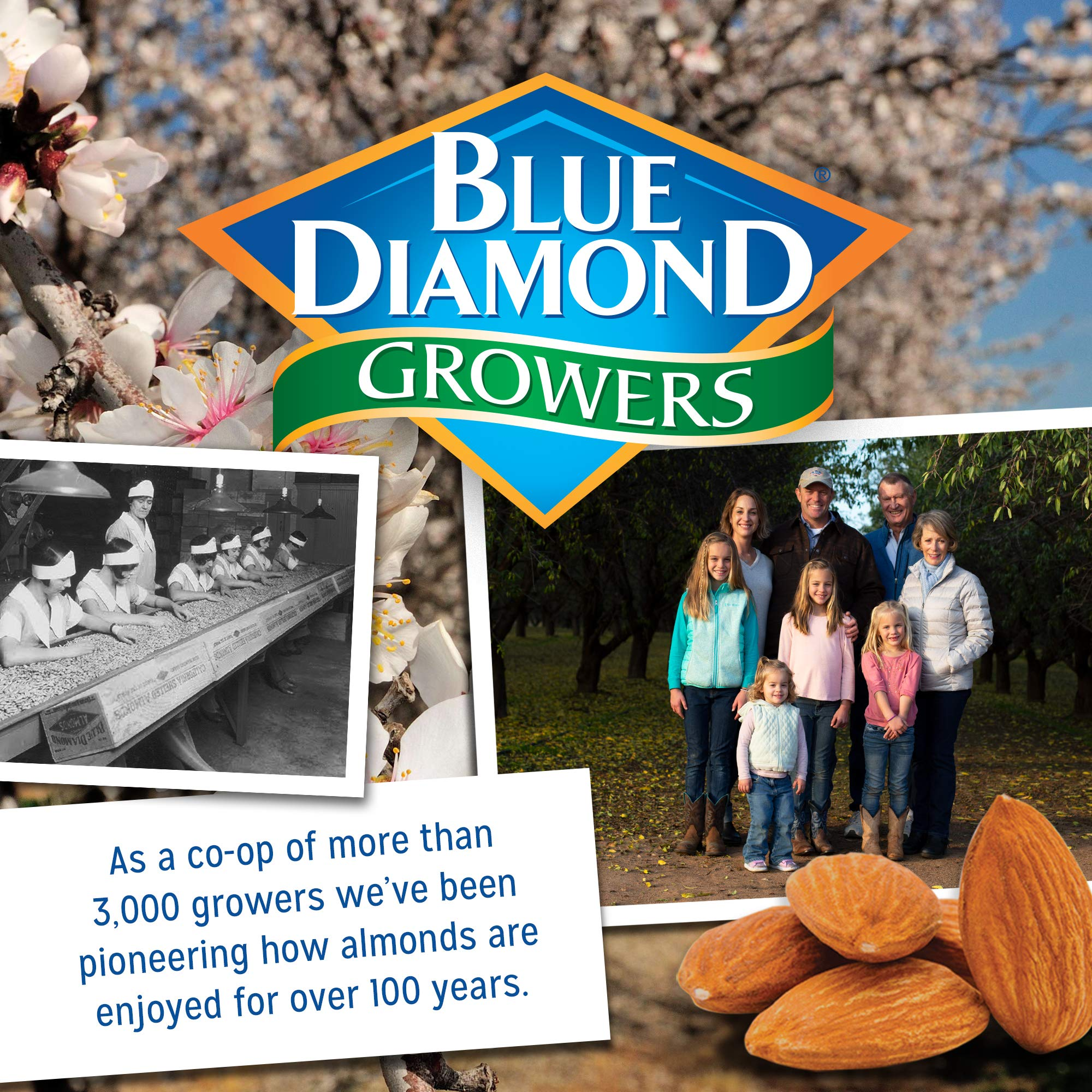 Blue Diamond Almonds On the Go 100 Calorie Packs, Lightly Salted, 12 Count by Blue Diamond Almonds (Image #3)