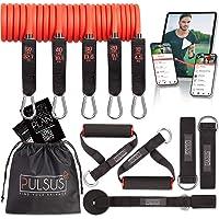 Fitnessband weerstandsbanden set met oefenvideo app - Pro Expander bandenset: 5 weerstandsbanden, handgrepen, voetlussen…