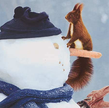red squirrel wwf animal charity christmas cards snowman pack 10 friends - Animal Charity Christmas Cards
