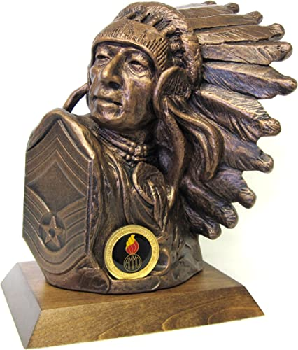Large CMSGT Chief Bust, 9