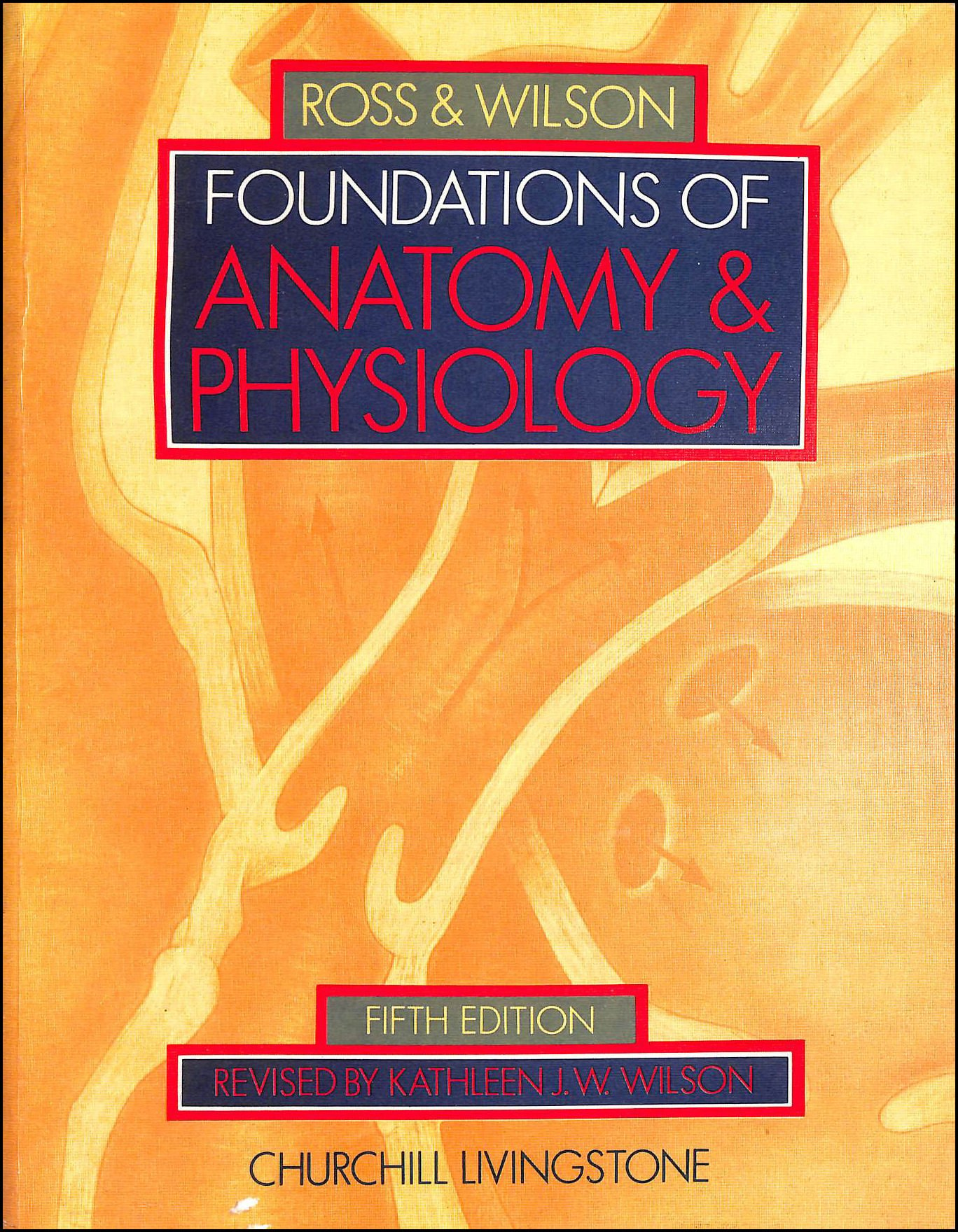 Buy Foundations of Anatomy and Physiology Book Online at Low Prices ...