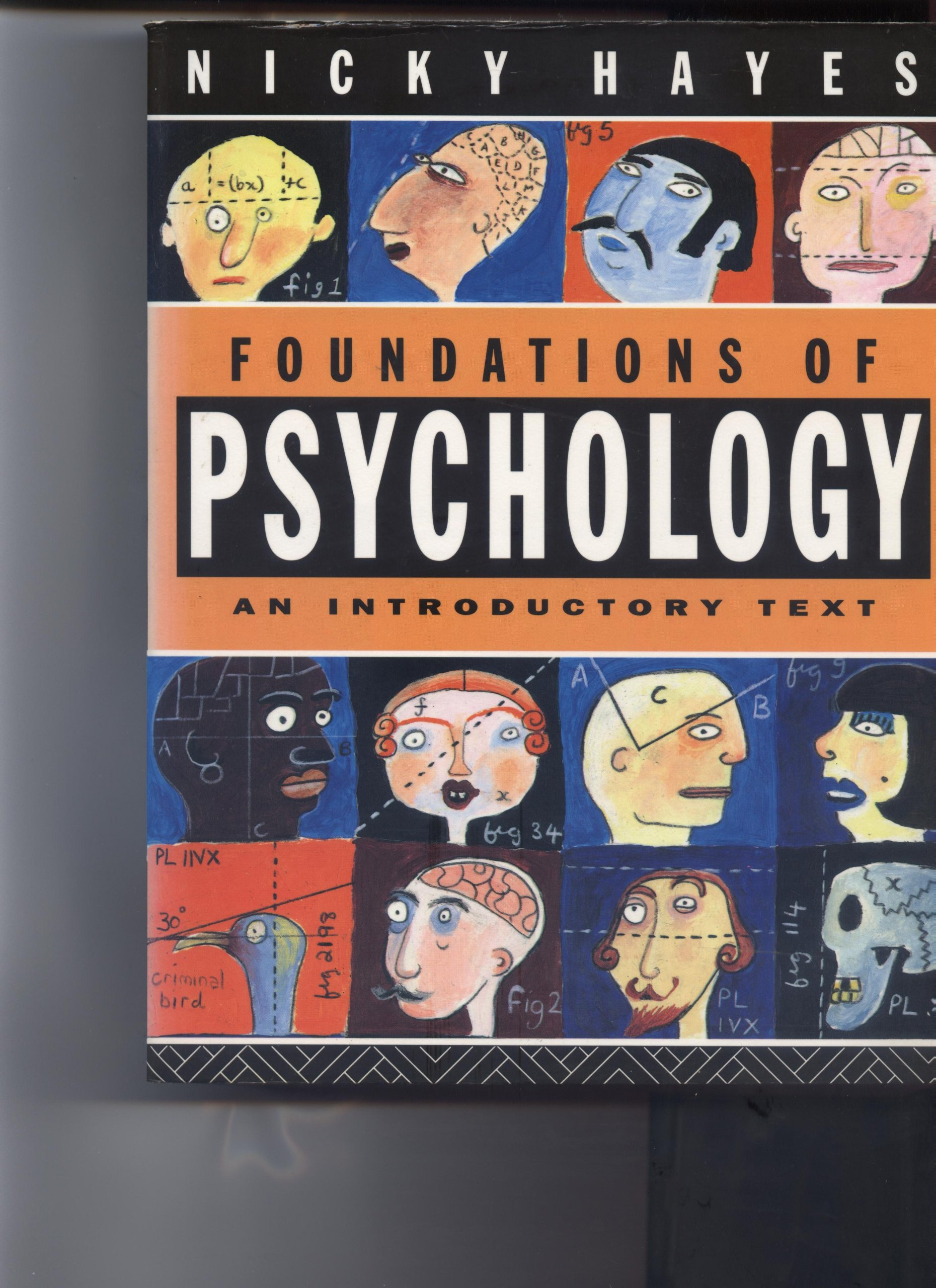 Foundations of Psychology: An Introductory Text: Amazon.co.uk: Nicky Hayes: 9780415015615: Books