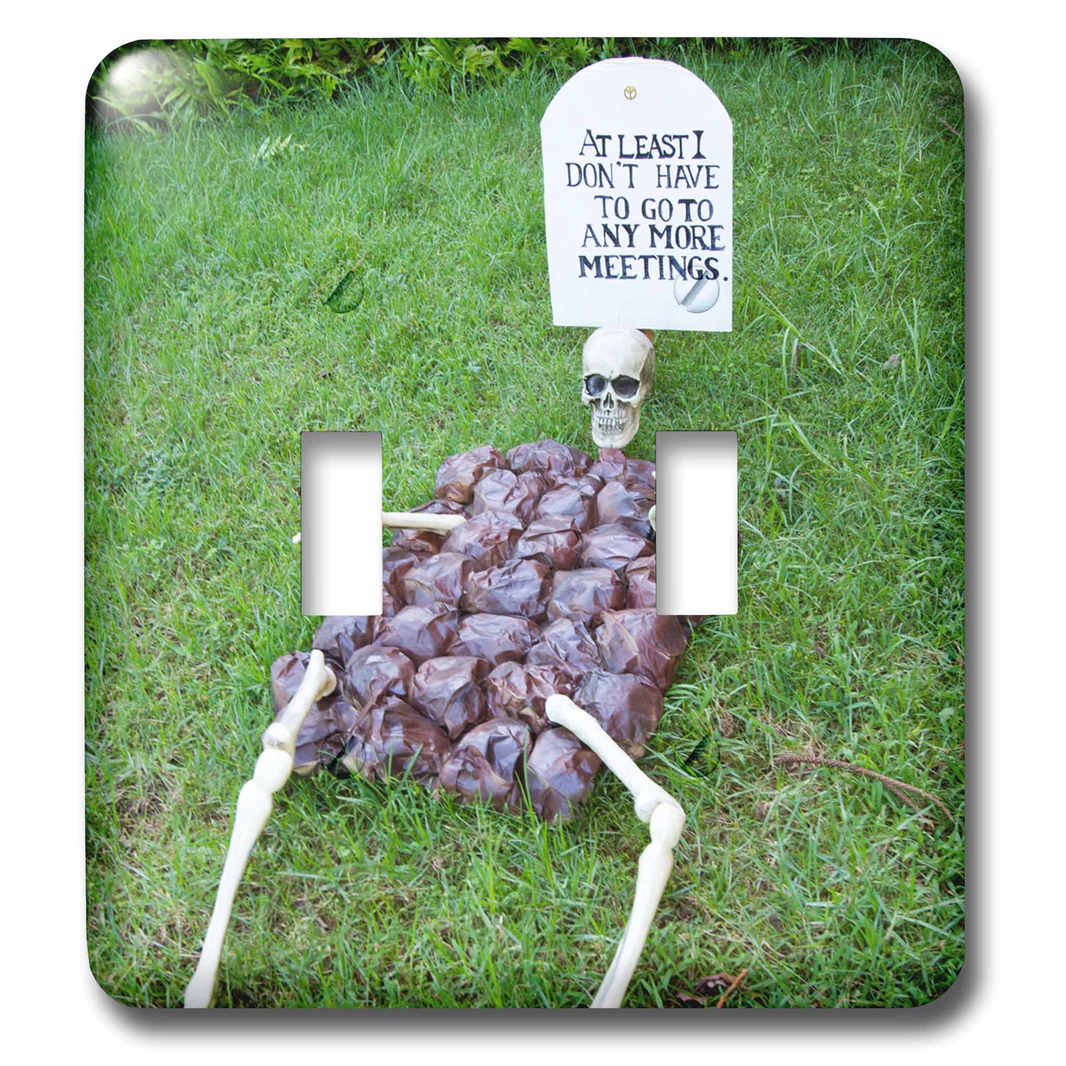 3dRose LSP_250803_2 Skeleton Express Anti Meeting Sentiment. Lanai. Hawaii. USA Toggle Switch, Mixed
