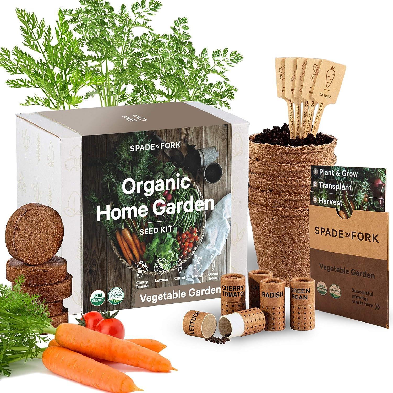 Indoor Vegetable Garden Starter Kit - Certified USDA Organic Non GMO - 5 Seed Types Cherry Tomato, Lettuce, Carrot, Radish, Green Bean - Potting Soil, Peat Pots - DIY Kitchen Grow Kit